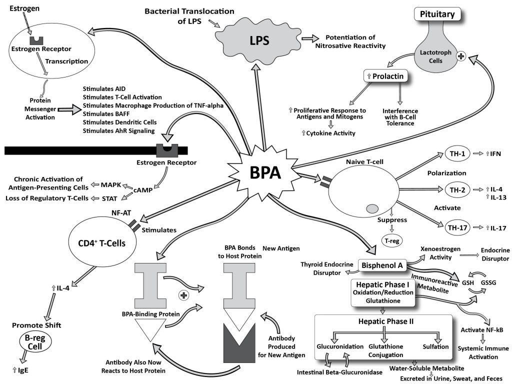BPA Diagrams (012214)13